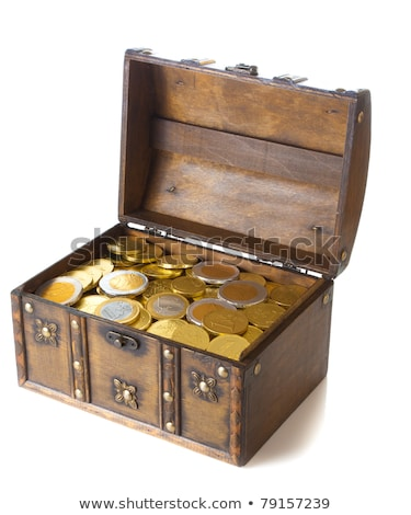 Euro Münzen Schatz Feld Weihnachten Spielerei Stock foto © AndreyPopov