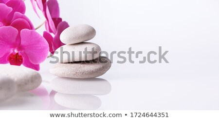 Orchid and Spa stock photo © BVDC