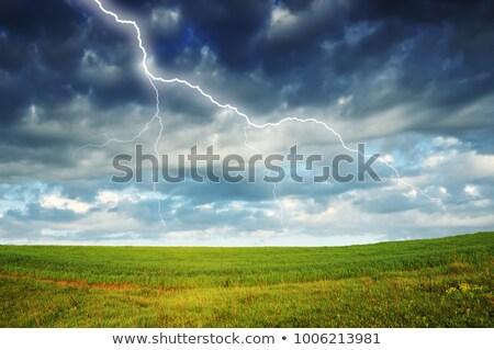 yıldırım · çiftlik · alan · manzaralı · görmek · grev - stok fotoğraf © justinb