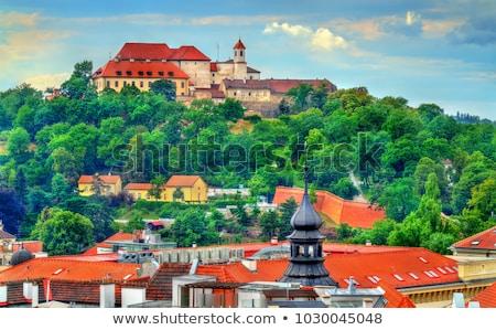 Csehország panorámakép kilátás város katedrális épület Stock fotó © FER737NG