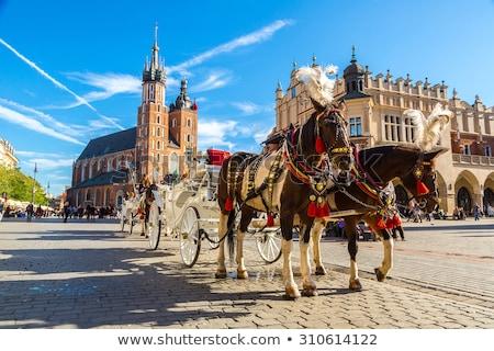 Polen · krakow · markt · vierkante · nacht · oude - stockfoto © 5xinc