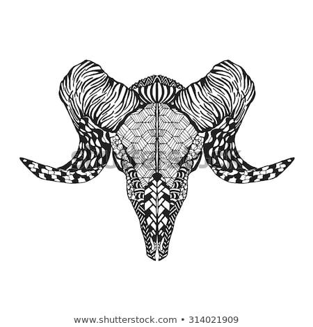 череп · копье · черно · белые · иллюстрация · искусства - Сток-фото © kali