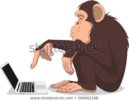 Maymun bilgisayar ağaç defter beyin karikatür Stok fotoğraf © tiKkraf69
