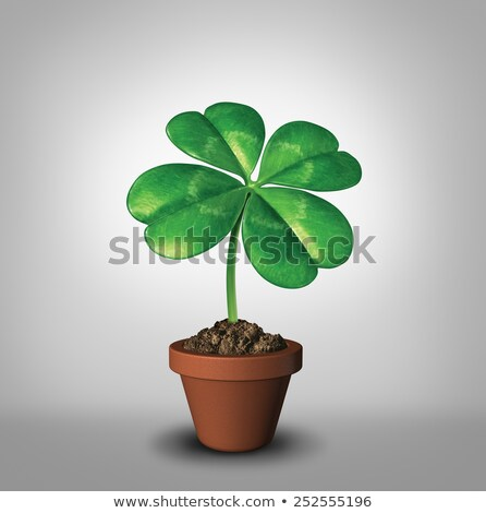 growing your luck stock photo © lightsource