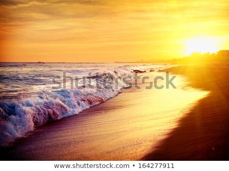 пляж Барселона рассвета один пляжей пейзаж Сток-фото © elxeneize