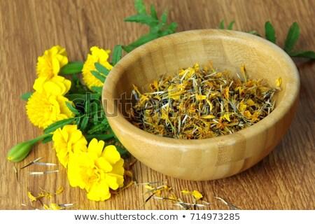marigold dried seed stock photo © ziprashantzi