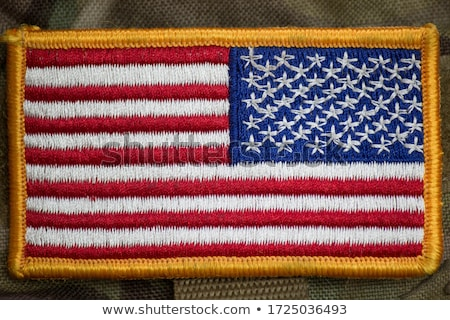 American flag carried by soldiers Stock photo © rmbarricarte