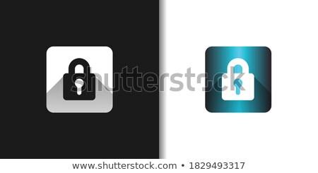 Bescherming web internet vierkante vector Blauw Stockfoto © rizwanali3d