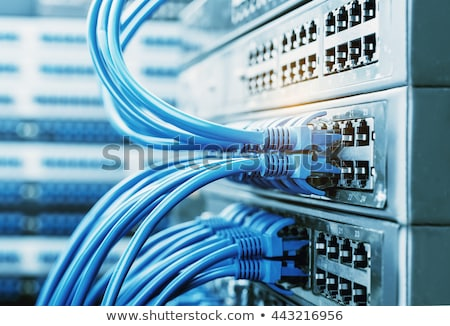technicians connecting network cable network connection concept stock photo © kirill_m