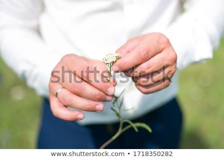 Vőlegény tart gyűrű doboz kezek kéz Stock fotó © esatphotography