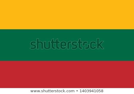 lithuania flag button stock photo © ojal