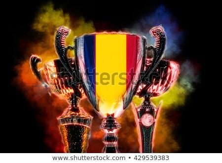Troféu copo bandeira Romênia ilustração digital Foto stock © Kirill_M
