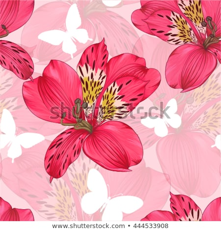 Tiger lily flower outline Stock photo © bluering