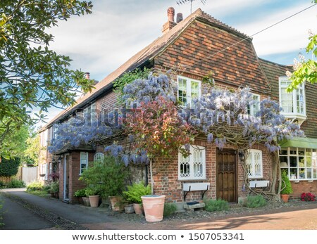 Row of cottages in a Village in Kent Stock photo © smartin69