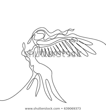 Belo anjo menina divino pequeno em pé Foto stock © lovleah