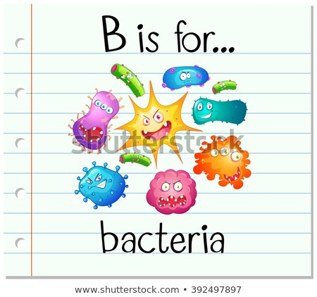 Flashcard alphabet B is for bacteria Stock photo © bluering