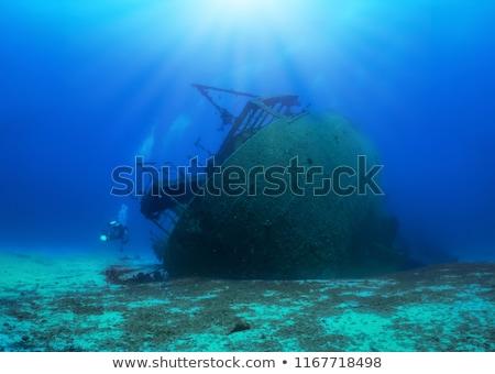 Jelenet hajóroncs óceán illusztráció háttér művészet Stock fotó © bluering