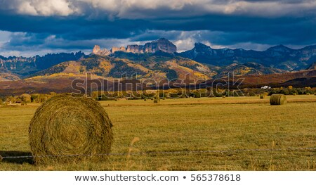 fence leading to rocky mountains  Stock photo © morrbyte