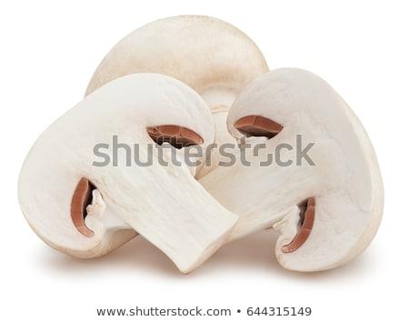 Három szeletek gomba illusztráció egészség háttér Stock fotó © bluering
