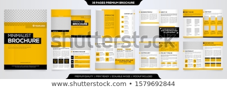 creative business magazine booklet layout template with abstract Stock photo © SArts