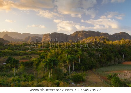Famous Cuba farmland tobacco area at sunset, Valley de Vinales,C Stock photo © CaptureLight
