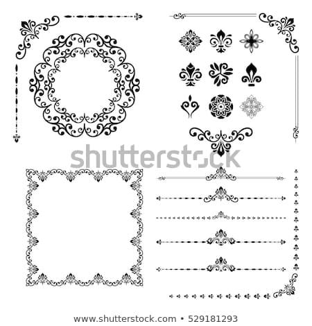 In bianco e nero frame floreale ornamento isolato bianco Foto d'archivio © orensila