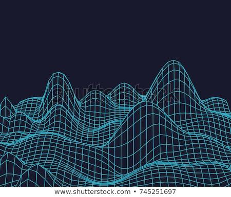 抽象的な · ベクトル · 地形 · 表面 · サイバースペース · グリッド - ストックフォト © popaukropa