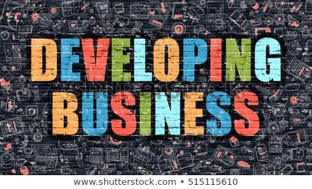 Multicolor Developing Business Growth Strategy on Dark Brickwall. Stock photo © tashatuvango
