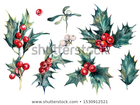 Watercolor collection with Christmas symbols Stock photo © Sonya_illustrations