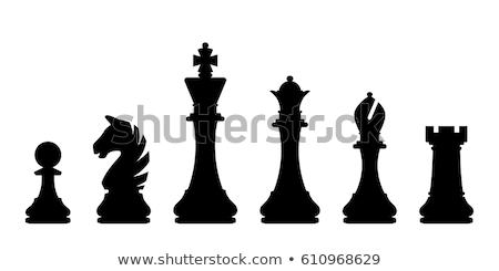 Preto peças de xadrez conjunto rei cavaleiro vetor Foto stock © Olena