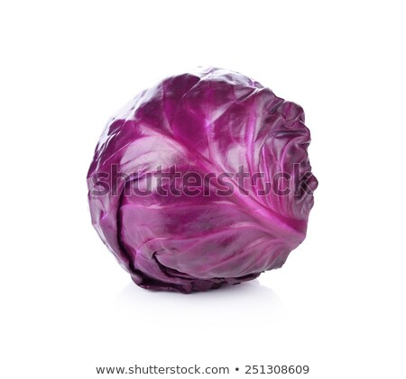 red cabbage head isolated on purple background stock photo © artjazz
