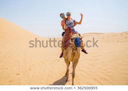 pustyni · drogowego · stylizowany · podróży · słońce · wygaśnięcia - zdjęcia stock © bluering