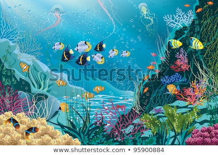 underwater tropical wallpaper vector illustration stock photo © carodi