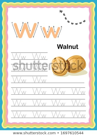 english words starting with w illustration stock photo © bluering
