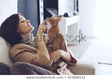 Stock fotó: Köt · nő · macska · virág · lány · otthon