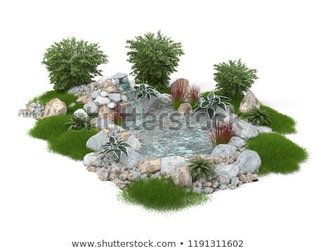 небольшой пруд белый иллюстрация природы фон Сток-фото © bluering