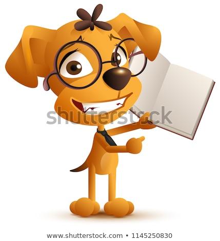 żółty smart psa nauczyciel okulary otwarta księga Zdjęcia stock © orensila