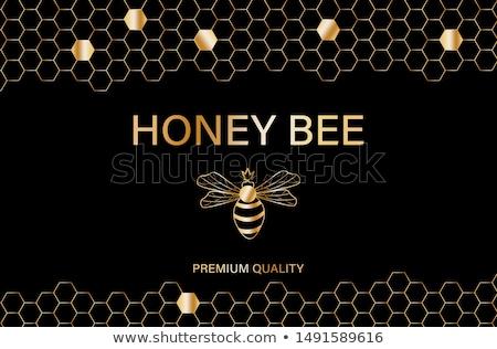 はちみつ · ラベル · セット · ミツバチ · 製品 · ビジネス - ストックフォト © lenm