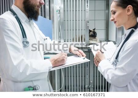 orvosok · megvizsgál · beteg · asztal · nő · orvosi - stock fotó © kzenon