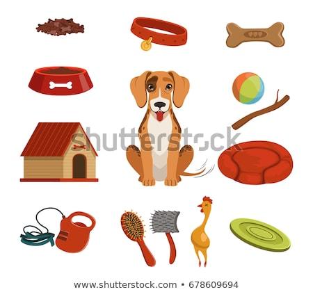 dog · bone · vorm · huisdier · dieren · zorg - stockfoto © dece