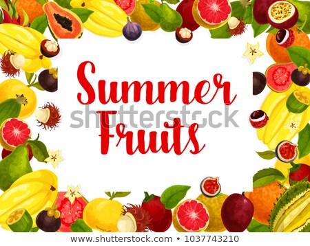 Mango fruit vruchten zomer banaan watermeloen Stockfoto © robuart