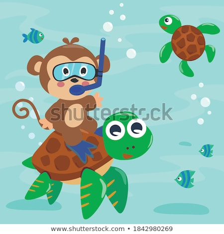 Maymun dalış okyanus örnek su balık Stok fotoğraf © colematt