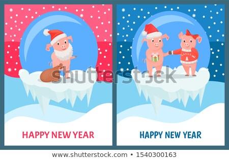 mikulás · bemutat · ajándék · ajándékok · felső · hó - stock fotó © robuart