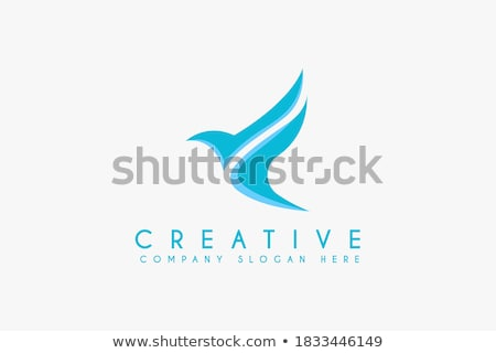 chilro · ícone · azul · isolado · branco · computador - foto stock © marysan