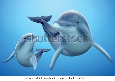 springen · dolfijn · icon · zwart · wit · vis · zee - stockfoto © olllikeballoon