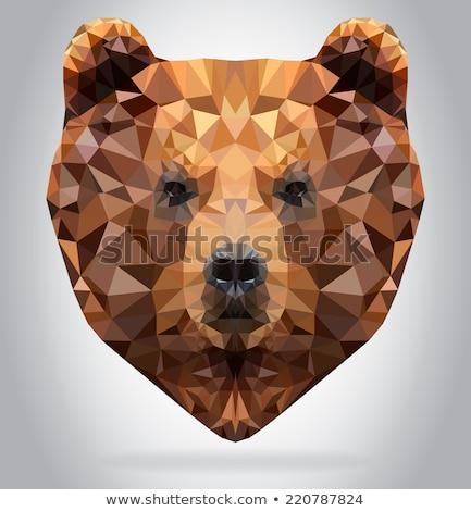 Grizzly medve fej mozaik alacsony poligon stílus Stock fotó © patrimonio