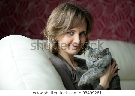 Nice Grey Cat with woman on sofa Stock photo © Lopolo