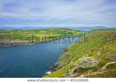 ストックフォト: 港 · 島 · コルク · アイルランド · 海 · ボート