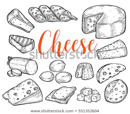 Set alimentare illustrazione parmigiano blu Foto d'archivio © netkov1