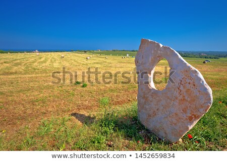 Green landscape of Istria and stone monument in Dajla stock photo © xbrchx